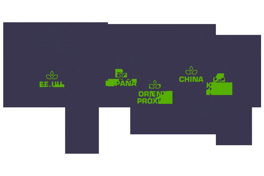 Mapamundi donde se indican los principales mercados en los que LIXONÉ tiene presencia Internacional